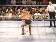 WrestleWar 1991.00027