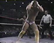 WWF The Wrestling Classic.00019