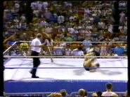 Wrestlefest 1988.00045