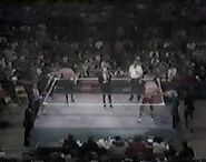 WWF The Wrestling Classic.00009