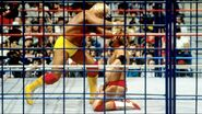Steel Cage Images.6