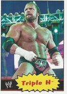 2012 WWE Heritage Trading Cards Triple H 40