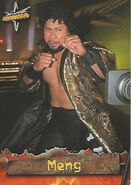 1999 WCW Embossed (Topps) Meng 41