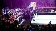 WWE World Tour 2013 - Rouen.1