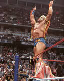 Ultimate Warrior9