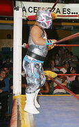 Mascarita Sagrada Jr
