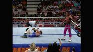 SummerSlam 1993.00036