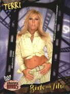 2002 WWE Absolute Divas (Fleer) Terri 88