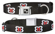The Bellas 02 Dog Collar