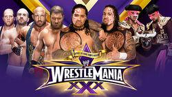 WM 30 Tag Title Match