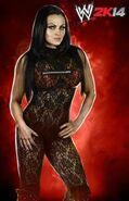WWE2k14 Aksana