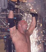 Goldberg WCW Championship