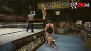 WWE 2K14 Screenshot.35