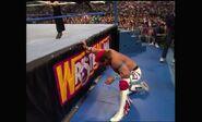 WrestleMania VIII.00035