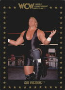 1991 WCW Collectible Trading Cards (Championship Marketing) Sid Vicious 19