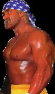 HulkHogan patriot