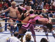 Royal Rumble 1988.7