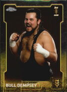 2015 Chrome WWE Wrestling Cards (Topps) Bull Dempsey 94