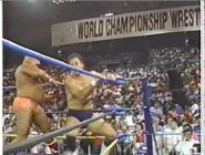 Great American Bash 1990.00005