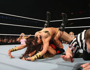 WrestleMania 23.56