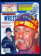Wrestling Eye - May 1991
