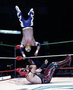CMLL Martes Arena Mexico 10