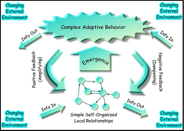 File:Complex-adaptive-system.jpg