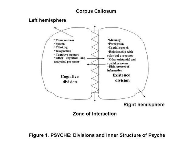 File:Determination and Study of Psyche in the Human Organism.jpg