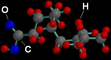 File:Dodecanioc Acid.JPG