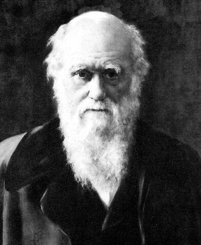 File:Charles Darwin 1881.jpg