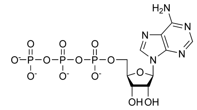 File:ATP chemical structure.png