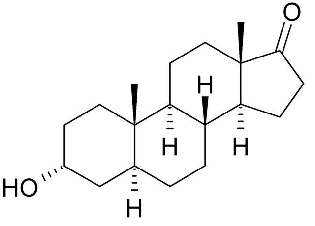 File:Androsterone.png