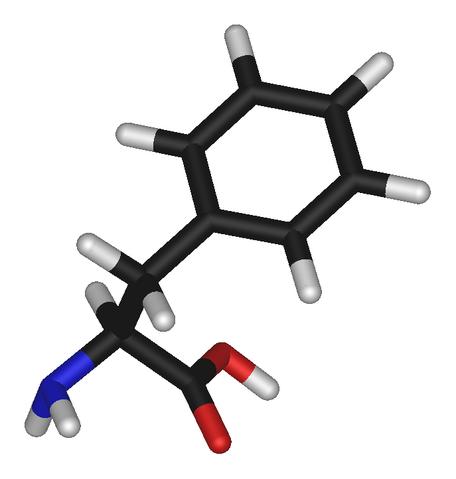 File:L-phenylalanine-3D-sticks.png