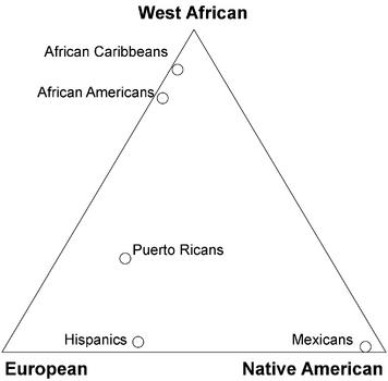 Admixture triangle plot