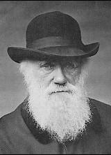 File:Charles Darwin 1880.jpg