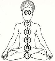 Sabdha chakras