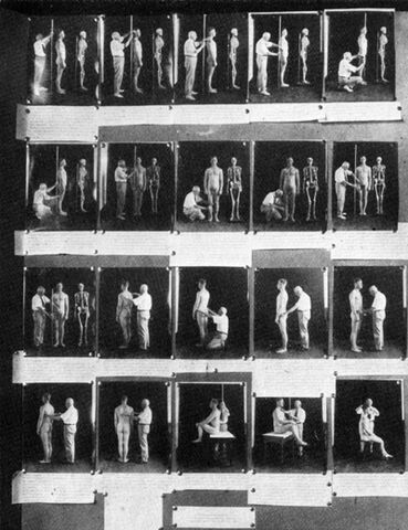 File:Anthropometry exhibit.jpg