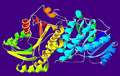 AlcoholDehydrogenase-1A4U.png