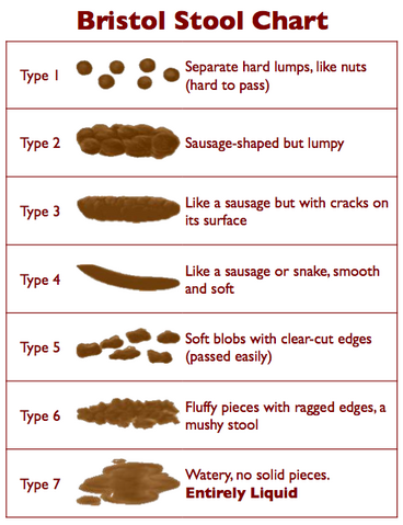 File:Bristol Stool Chart.png