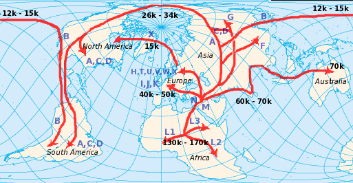 File:Human mtDNA migration.png