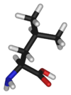 L-leucine-3D-sticks