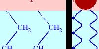 Phosphatides