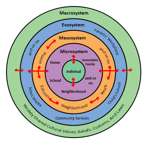 File:Urie Bronfenbrenners Bioecological Model.png