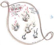 Bunny concept