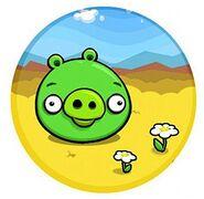 PigConcepts01