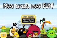 Angry Birds and Bad Piggies