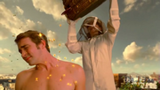 Wikia Daisies - Chuck's bees