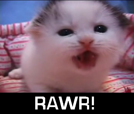 File:Rawrkitty.png