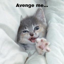 File:Avenge Me!.jpg