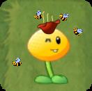 HoneyFlower1